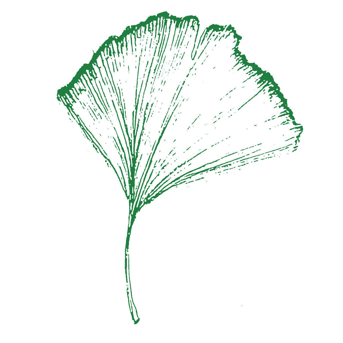 Logo Goennerverein Gruen