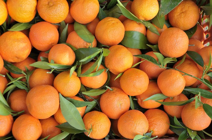Orangenbestellung